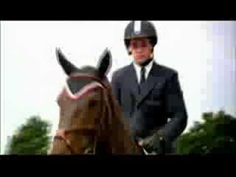 Greenhawk Harness & Equestrian Supplies