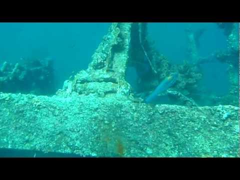 Aruba Underwater- Antilla