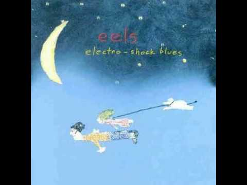 Eels - My Descent Into Madness