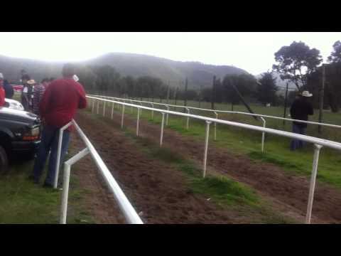 Texcoco Edo. México lo mejor de carreras de caballos