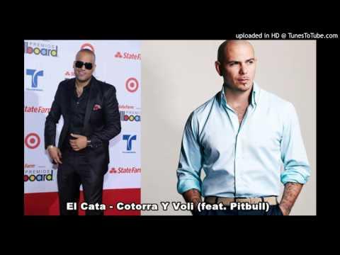 El Cata - Cotorra Y Voli (feat. Pitbull) REAL SONG mp3 indir