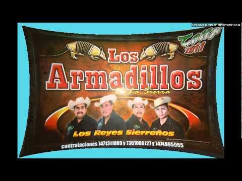 Los Armadillos De La Sierra****LA LUZ DE TUS OJOS*****EN VIVO