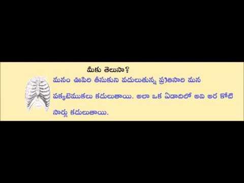 Teta Telugu – Bit Bank – Wonders News in telugu Photo Image Pic