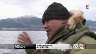 Cá nuôi Kinh tế Môi trường Sức Khỏe HD