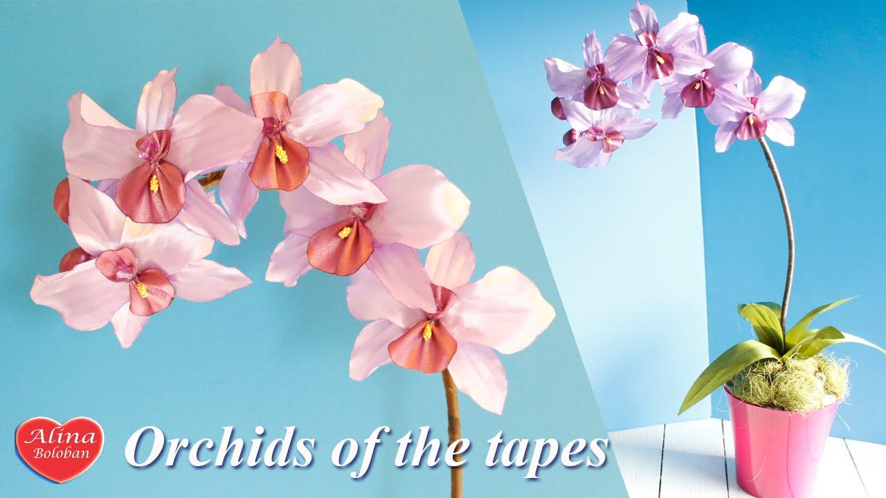 Орхидеи из лент