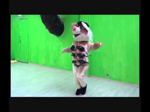 Копия видео Sexy Schwein Maskottchen Stripteas Für Jeden Anlass Zum Buchen video