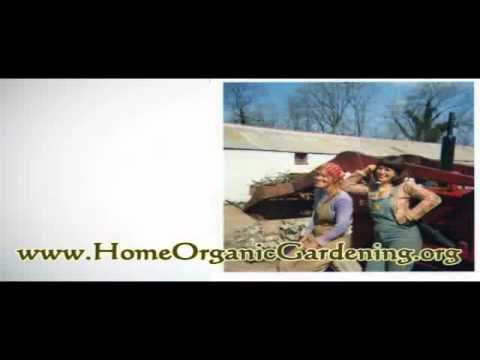 Homemade Organic Pesticides - Pest Control Made Easy and Safe