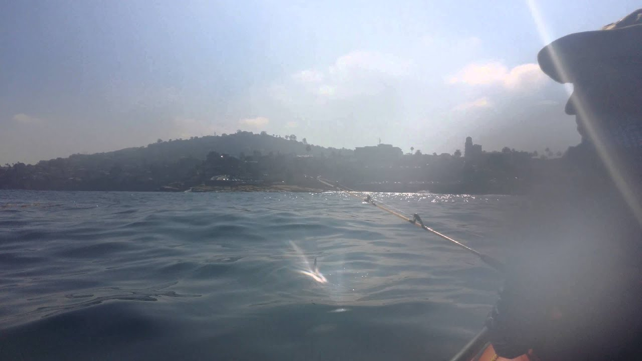 Kayak fishing la jolla shores part 1 youtube for La jolla fishing