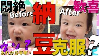"""【大嫌いな納豆に大喜び!?する1歳1ヶ月の赤ちゃん~悶絶離乳食から半年~】""""離乳食完了期"""" みはるんChannel"""