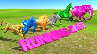 Learn Wild Animals Running Race Video For Kids - Wild Animals Names & Sounds For Children Toddlers