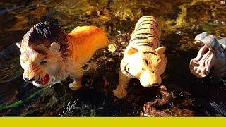 ZOO SAFARI ANIMAL Toys In Waterfall Jungle-Learn Names -Kids Z Fun-Lion,Tiger,Bear