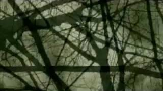ДДТ - Крыса весна
