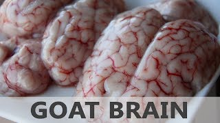 Health Benefits Of Goat Brain Or Lamb Brain - Lean Protein Foods - Healthy Foods