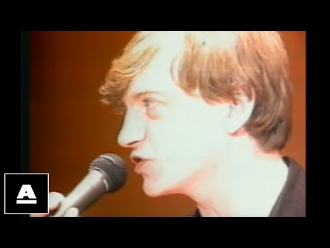 The Fall - Big New Prinz