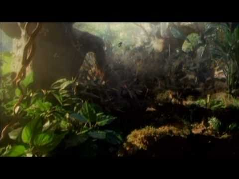 Rainforest in Antarctica 100 Million Years in the Future [HD]