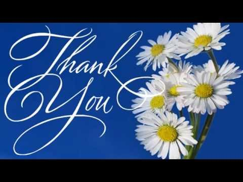 Thank You | Ecards | Greeting Cards | Messages | Wishes | Video | 00 09