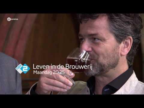 Een zoektocht naar het perfecte bier | Leven in de Brouwerij