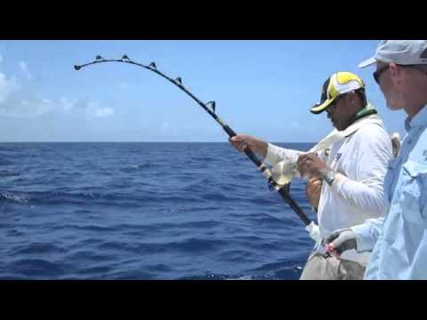 Linkin 39 park news for Pensacola deep sea fishing