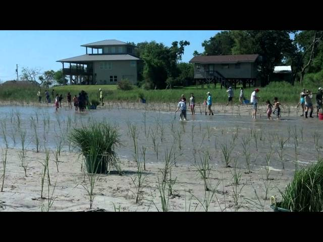 2014 Galveston Bay Foundation Guardian of the Bay Award Video