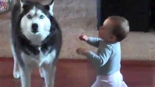 Köpekle Bebeğin Muhteşem Düeti