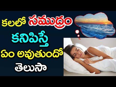 కలలో సముద్రం కనిపిస్తే ఏం అవుతుందో తెలుసా | Interesting Facts in Telugu #9RosesMedia