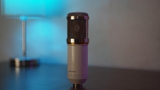Possibly THE BEST budget microphone!!! - Neewer BM-800 Review
