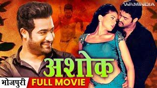 Download Jr.Ntr & Sameera Reddy New Movie 2017 - Ashok (2017) Dubbed Action Full Movie | Jr Ntr Movies 2017 3Gp Mp4