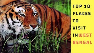 Top 10 Best Tourist Places in West Bengal| eco tourism|  kolkata👍👍