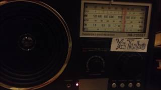 ያሬድ ነጉ አዋሳ ለኮንሰርት ሲጠበቅ አውስትራሊያ...(Audio)