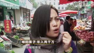 download lagu 20170105 致富经  难吃果子 年入两千万 gratis