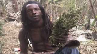 Peter Tosh Bush-Doctor *a Ganja-TRIBUTE* (((video made in Jamaica)))