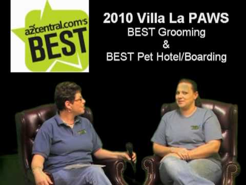 Villa La PAWS - Grooming - The Right Shampoo?