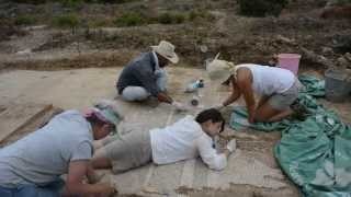 UNL archaeological team unearths giant Roman mosaic in southern Turkey