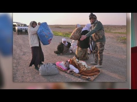 Isis releases  hundreds of Yazidi prisoners in Iraq