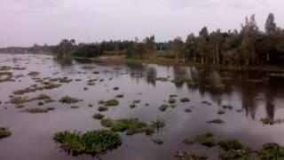 Arialkha river || Hasnabad Bazar - Narsingdi - Dhaka