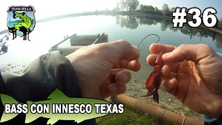 Pesca al Bass con innesco Texas - Bassfishing