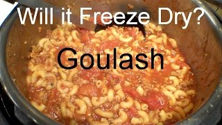 Will it Freeze Dry? GOULASH - In a Harvest Right Home Freeze Dryer.