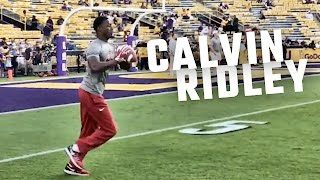 See how Calvin Ridley looks warming up for LSU game.