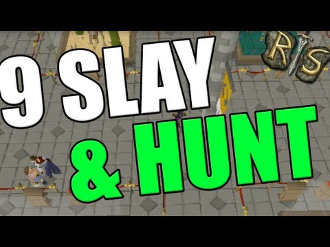 Runescape 2007 [Old School] – 9 Hunter and Slayer Varrock Museum Quiz Guide!