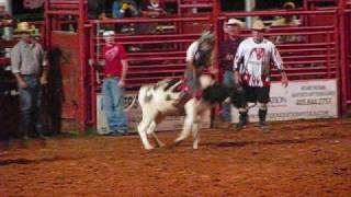 Jr. Rodeo calf, steer, and bullriding!