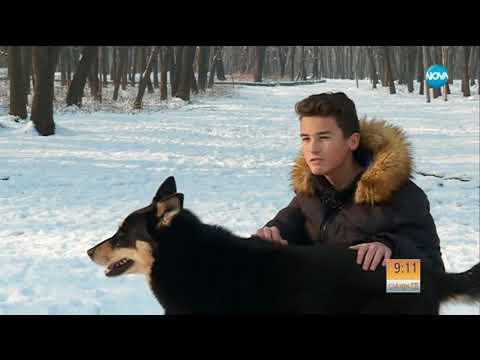 БЪЛГАРСКИЯТ ХАЧИКО: Кучето, което чака починалата си стопанка - Събуди се (28.01.2018)