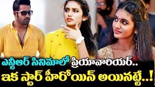JR NTR Movie Heroine Confirmed Priya Prakash Varrier |  ఎన్టీఆర్ సినిమాలో ప్రియ ప్రకాష్ | TTM