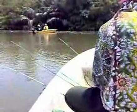 Freshwater Prawn Fishing / Memancing Udang Galah