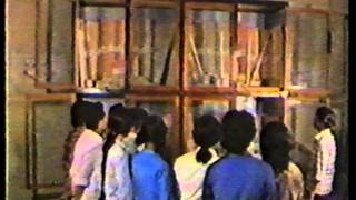30 năm-Công ty cổ phần giấy việt trì
