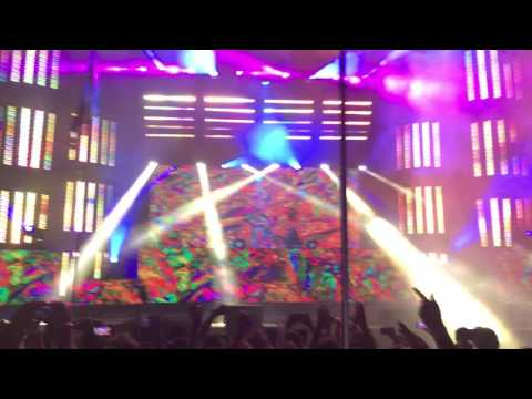 Bassnectar: Reaching Out, Music Is The Drug, Take You Down @ Electric Forest 2016
