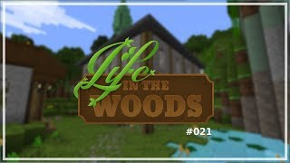 Life in the Woods #021 | Mega Update + Mein Haus