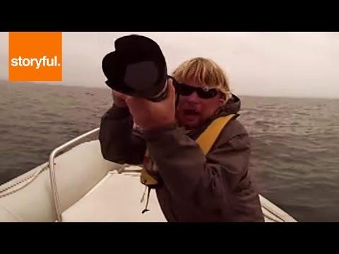 Blue Whale Capsizes Boat In California
