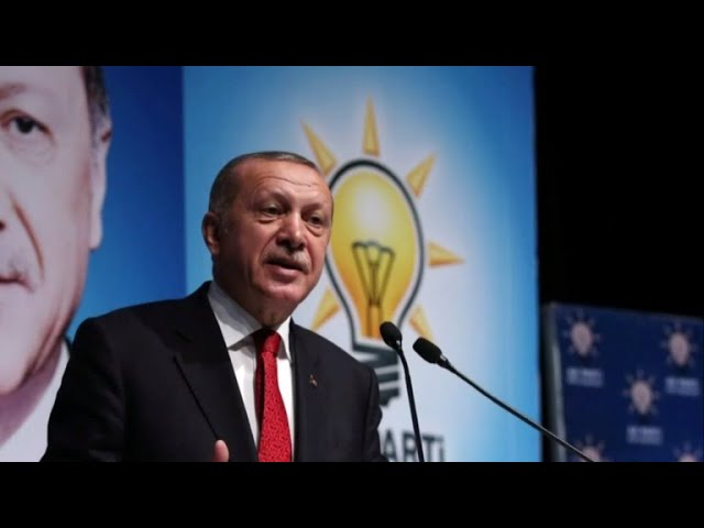Turkey's currency crisis tests Erdogan's authoritarian style