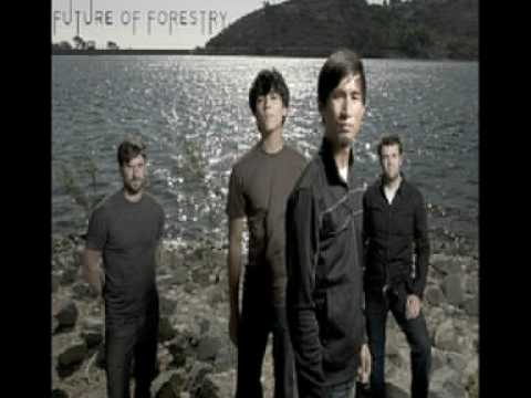 Future Of Forestry - You And I