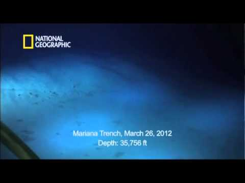 Video Camerons View of the Mariana Trench - YouTube